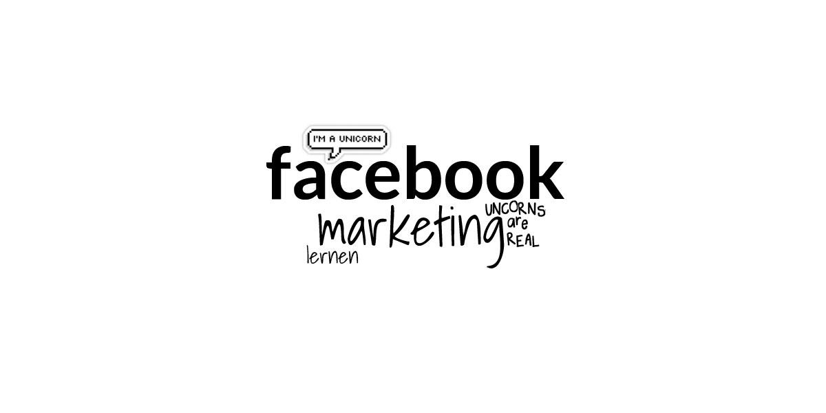 Cours en ligne de marketing sur Facebook : cours accéléré sur les publicités et les fans pour les responsables des médias sociaux
